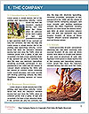 0000091358 Word Template - Page 3