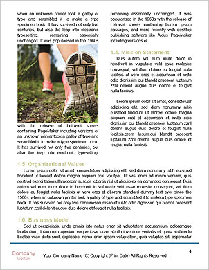 0000091358 Word Template - Page 4