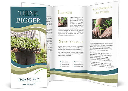 0000091365 Brochure Template