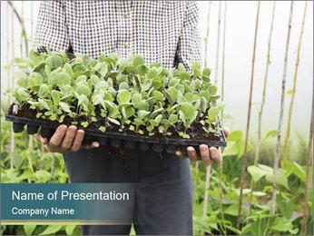 Organic Farmer PowerPoint Templates - Slide 1