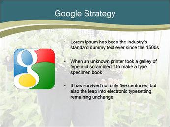 Organic Farmer PowerPoint Templates - Slide 10