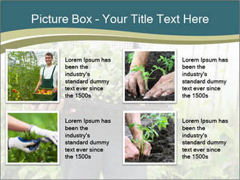 Organic Farmer PowerPoint Templates - Slide 14
