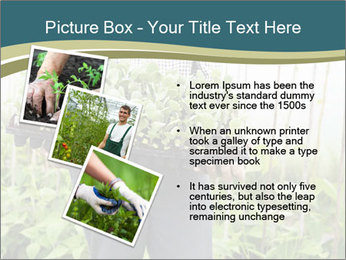 Organic Farmer PowerPoint Templates - Slide 17
