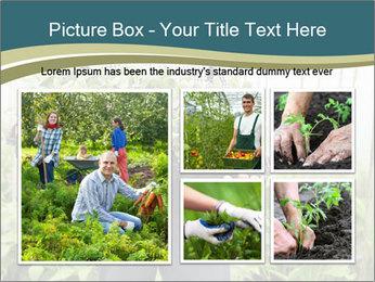 Organic Farmer PowerPoint Templates - Slide 19