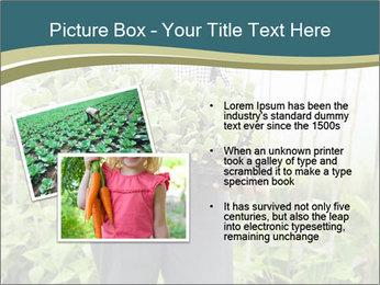 Organic Farmer PowerPoint Templates - Slide 20