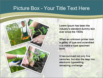 Organic Farmer PowerPoint Templates - Slide 23