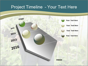 Organic Farmer PowerPoint Templates - Slide 26