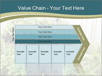 Organic Farmer PowerPoint Templates - Slide 27