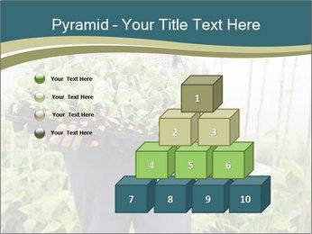 Organic Farmer PowerPoint Templates - Slide 31