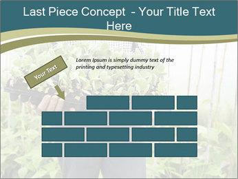 Organic Farmer PowerPoint Templates - Slide 46