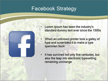 Organic Farmer PowerPoint Templates - Slide 6