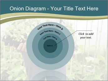 Organic Farmer PowerPoint Templates - Slide 61