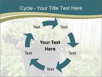 Organic Farmer PowerPoint Templates - Slide 62