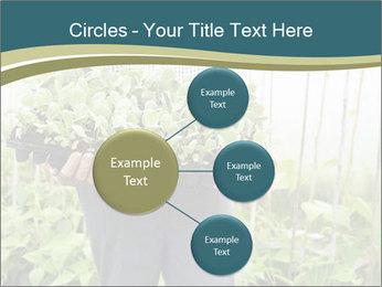 Organic Farmer PowerPoint Templates - Slide 79