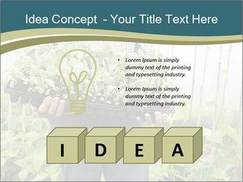 Organic Farmer PowerPoint Templates - Slide 80