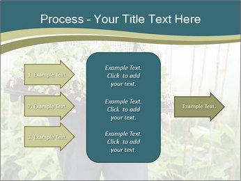 Organic Farmer PowerPoint Templates - Slide 85