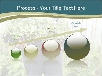 Organic Farmer PowerPoint Templates - Slide 87
