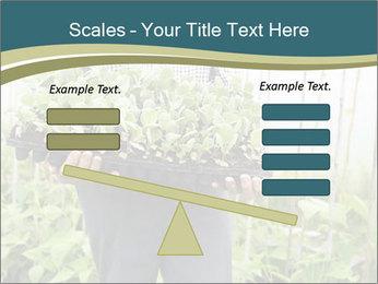 Organic Farmer PowerPoint Templates - Slide 89