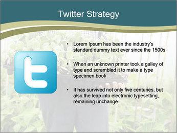 Organic Farmer PowerPoint Templates - Slide 9