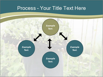 Organic Farmer PowerPoint Templates - Slide 91