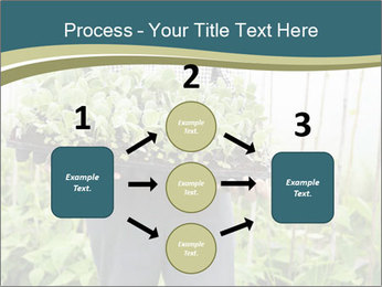 Organic Farmer PowerPoint Templates - Slide 92