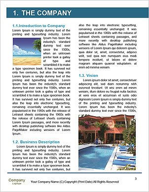 0000091370 Word Template - Page 3