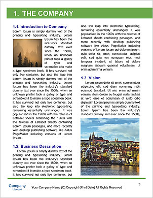 0000091371 Word Template - Page 3