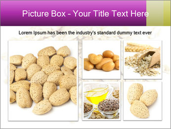 Heap of dry rolled oats PowerPoint Template - Slide 19