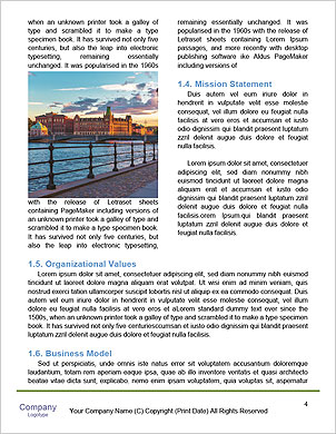 0000091374 Word Template - Page 4