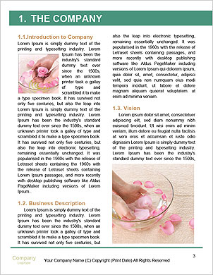0000091376 Word Template - Page 3