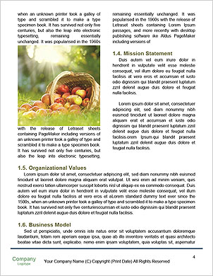 0000091386 Word Template - Page 4