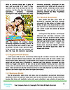 0000091387 Word Templates - Page 4