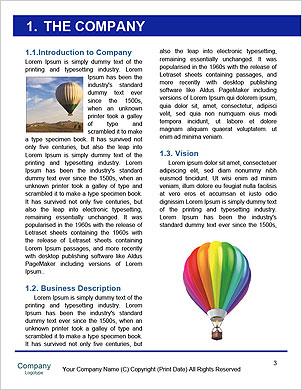 0000091391 Word Template - Page 3