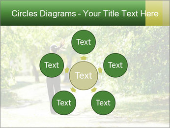 Park along trees PowerPoint Template - Slide 78