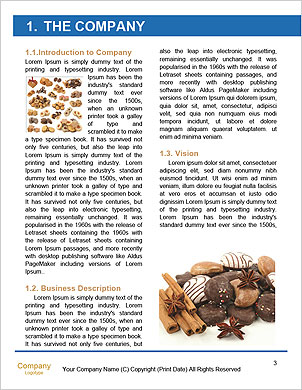 0000091401 Word Template - Page 3