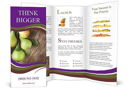0000091404 Brochure Templates