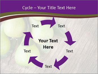 Freshly harvested pears PowerPoint Template - Slide 62