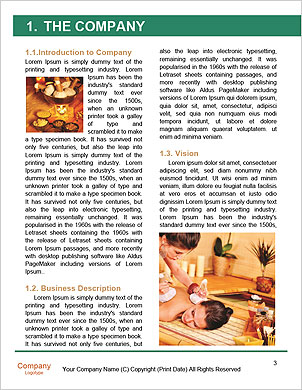 0000091405 Word Template - Page 3