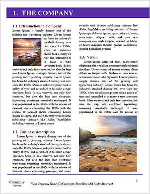 0000091406 Word Template - Page 3