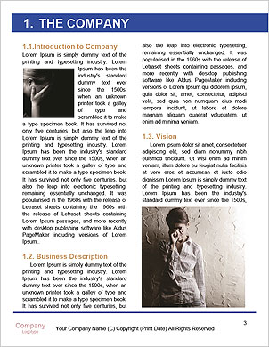0000091414 Word Template - Page 3