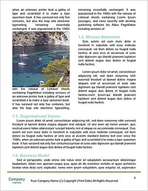 0000091416 Word Template - Page 4