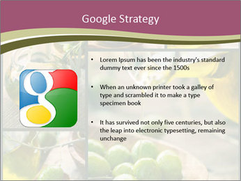 Olive harvest collage PowerPoint Template - Slide 10