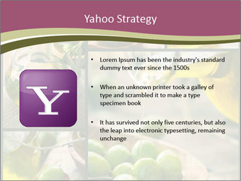 Olive harvest collage PowerPoint Template - Slide 11