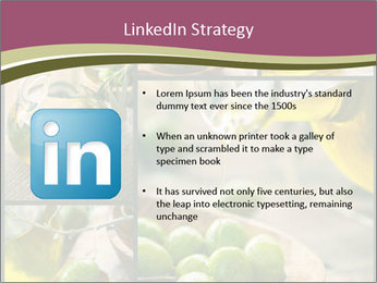 Olive harvest collage PowerPoint Template - Slide 12