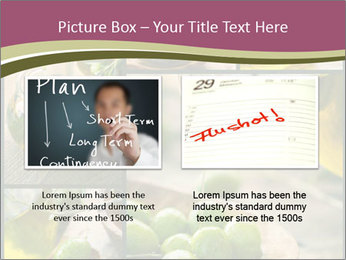 Olive harvest collage PowerPoint Template - Slide 18