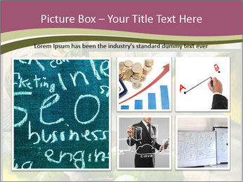 Olive harvest collage PowerPoint Templates - Slide 19