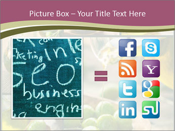 Olive harvest collage PowerPoint Template - Slide 21
