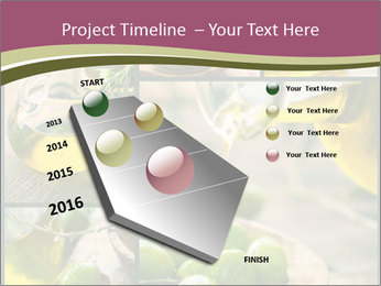 Olive harvest collage PowerPoint Template - Slide 26