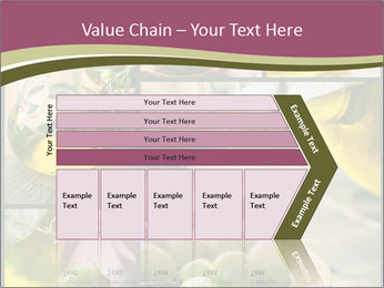 Olive harvest collage PowerPoint Template - Slide 27