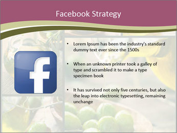 Olive harvest collage PowerPoint Template - Slide 6